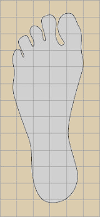 picture of foot traced on graph paper